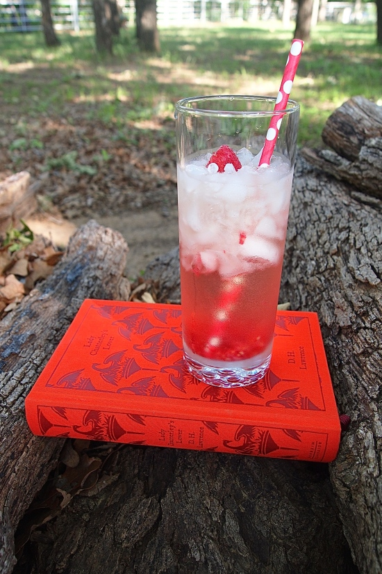 Muddled Raspberry Vodka Gimlet